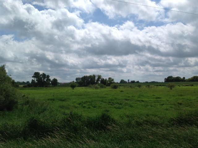 Search homes on 5+ Acres in Isanti County.