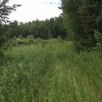 2297 120th Avenue, Braham, MN 55006 — $129,900 This acreage property for sale in Braham has over 77 acres of hunting land plus it's a perfect parcel to build […]