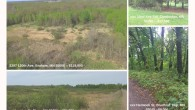 If you or someone you know is searching for land for sale in MN, check out the options we currently have available! We have land for sale in Mora, land […]