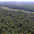 xxx Falcon Street, Mora, MN 55051 — $139,900 In search of the perfect acreage property for sale in Mora that has a greathabitat for numerous wildlife? This eighty acres of […]